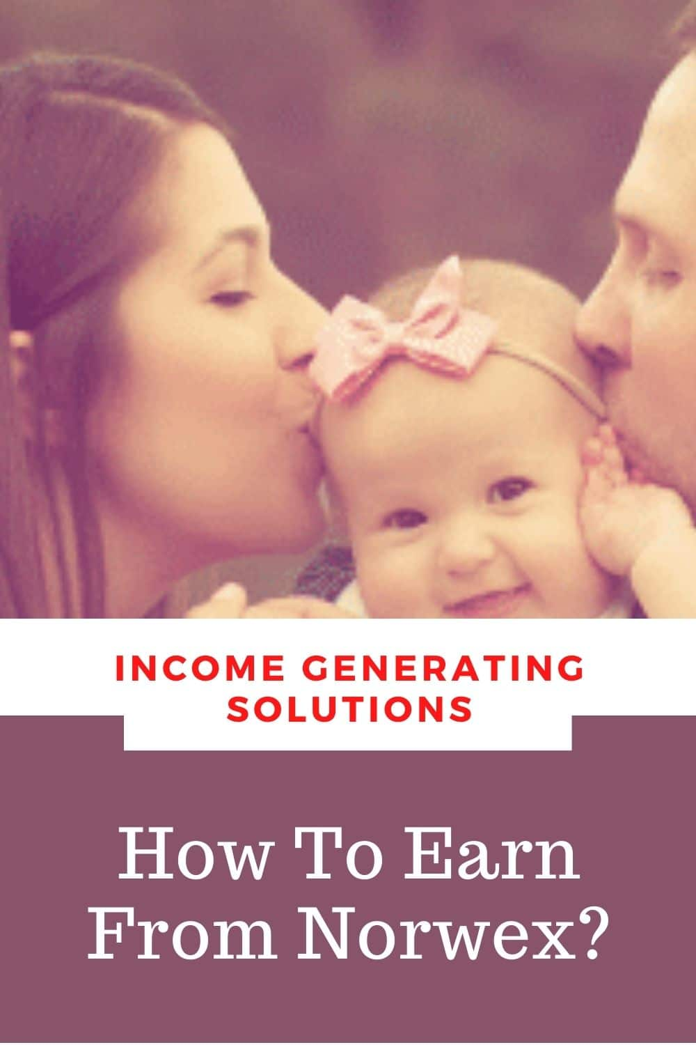 How to earn from norwex