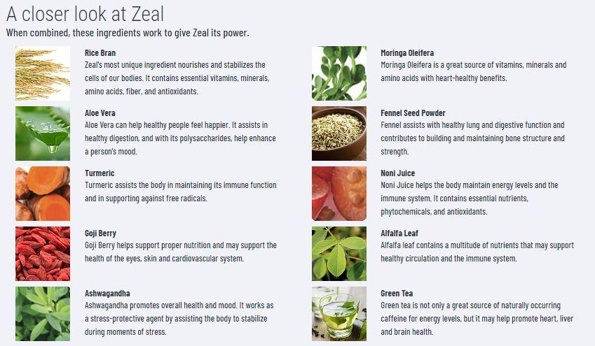zurvita product ingredients